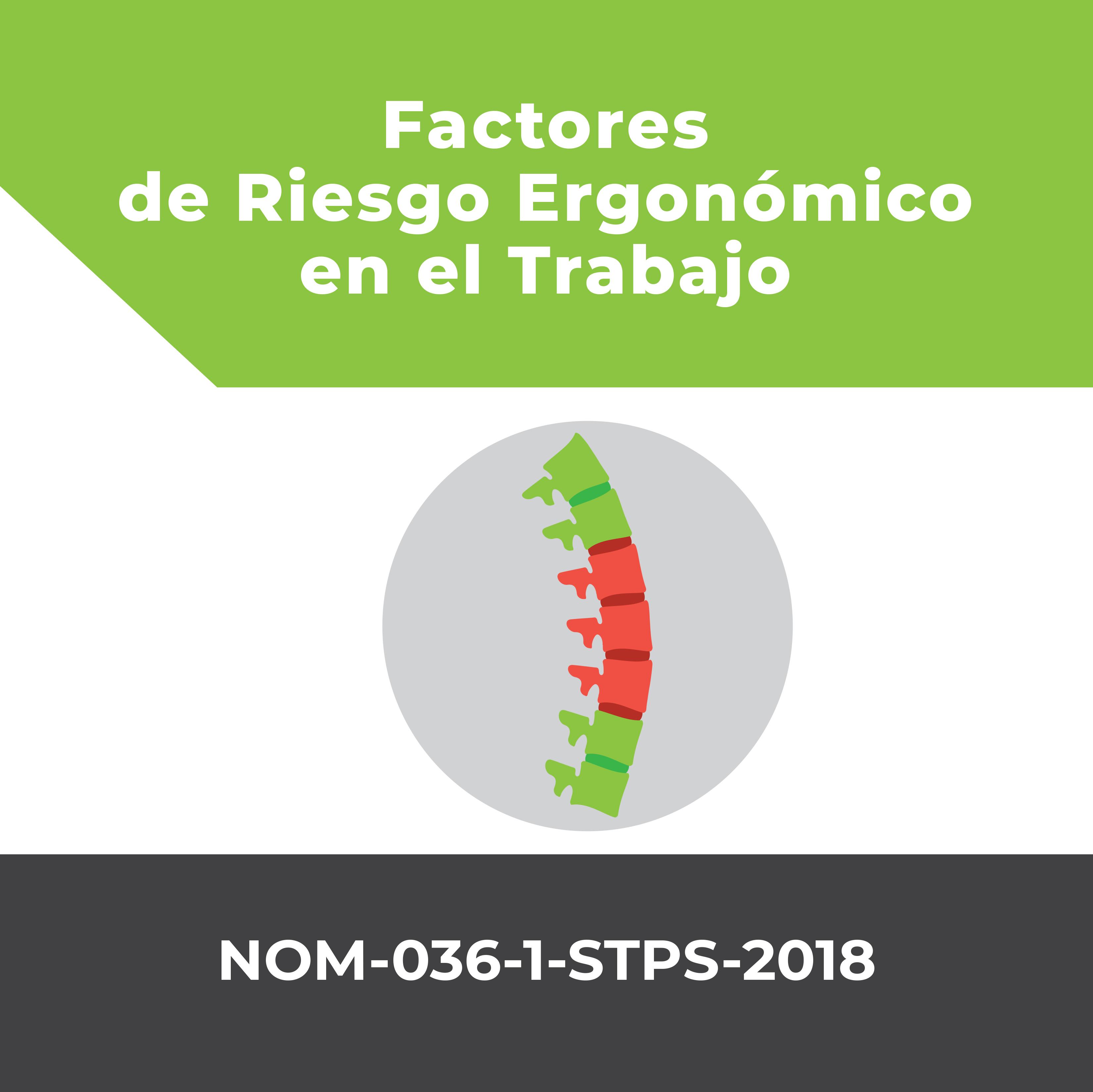 Factores de Riesgo Ergonómico en el Trabajo